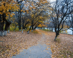 Scherbakov's park in the fall. Oleh Zack