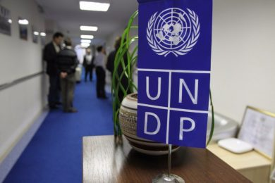 UNDP to conduct trainings on Business Development for IDPs